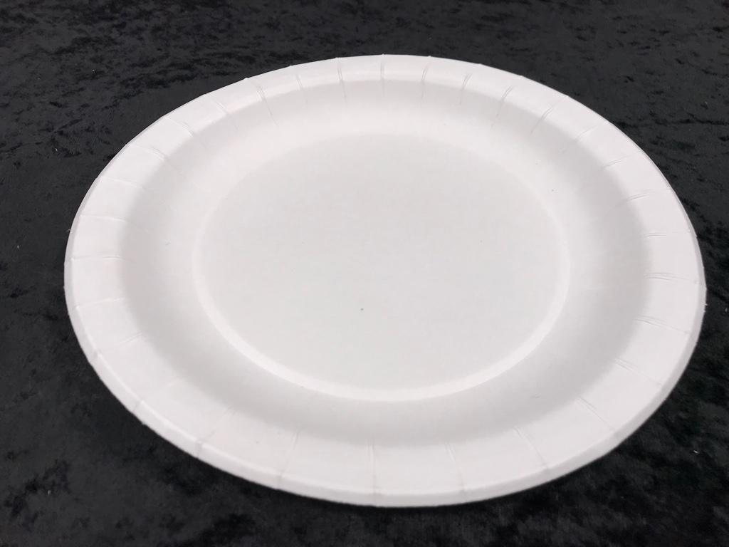 隨餐-免洗紙盤8吋