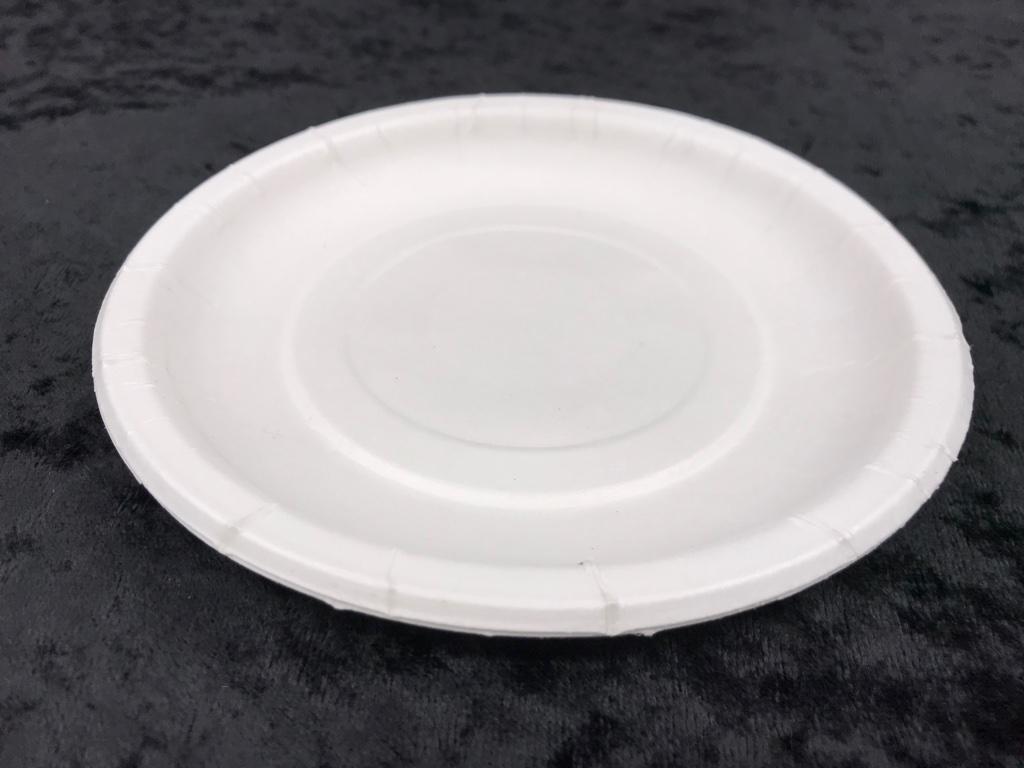 隨餐-免洗紙盤6吋